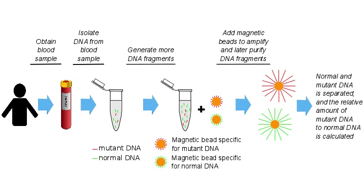 student exploration dna fingerprint analysis One powerful tool for determining dna sequences is a dna fingerprint using the  dna fingerprint analysis gizmo™, students can identify possible twins and.
